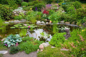 A landscape contractor can turn your garden into a comfortable and beautiful place.